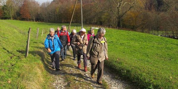 Wandergruppe auf dem Weg zur Abbaye d'Hauterive.