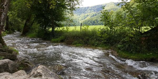 Folgen Sie vom Wanderparkplatz aus dem Brühlbach bis zu den Wasserfällen