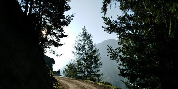 Aufstieg ins Kaisertal vor Veitenhof