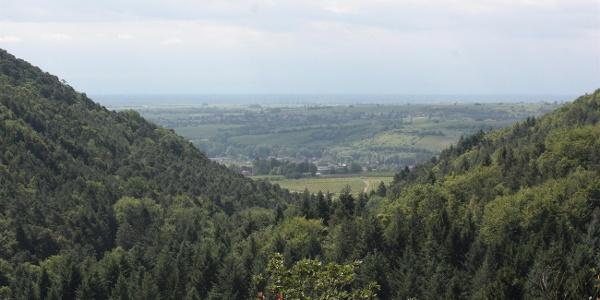 Ausblick Naturfreundehaus Kiesbuckel