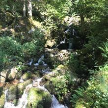 Wässerfall