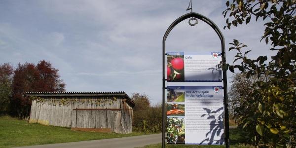 Radweg entlang des Immenstaader Apfel- und Weinweges