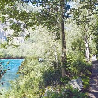 Uferweg am Alpenrhein