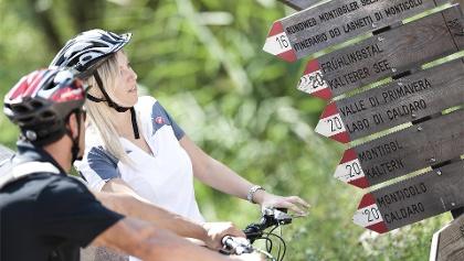 Tour in bici a Bolzano e d'intorni