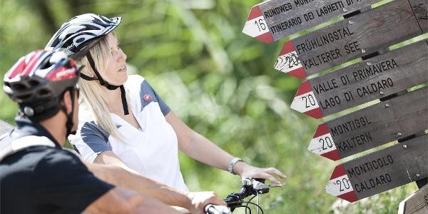 Bike tours in Bolzano and surroundings