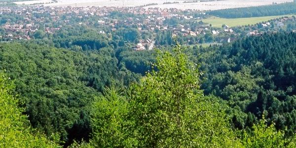 Blick vom Ripperberg