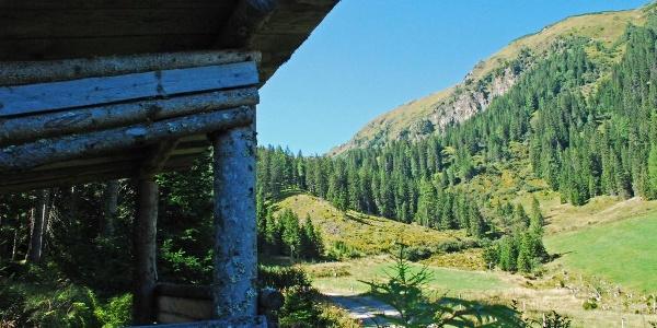Bei der Kälberhütte: Blick auf den Kreuzkogel