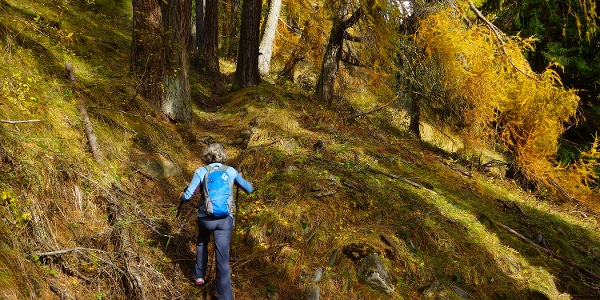 Aufstieg durch den Herbstwald.