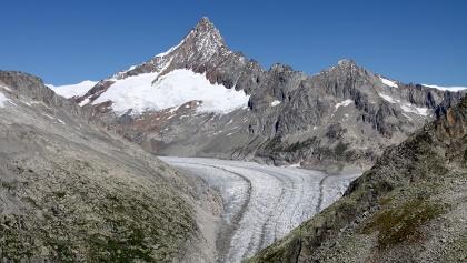 Blick über den Fieschergletscher auf das Finsteraarhorn.