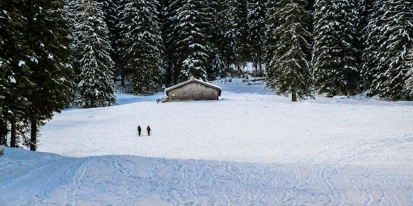 Skitour Hochalm an der Eckaualm