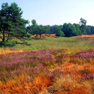 Naturschutzgebiet Boschbeektal