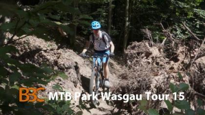 Mountainbikepark-Pfälzerwald Wasgau Dahn-Süd Tour 15