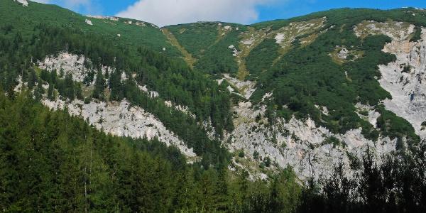 Blick auf den Langermann aus dem Griesleitengraben