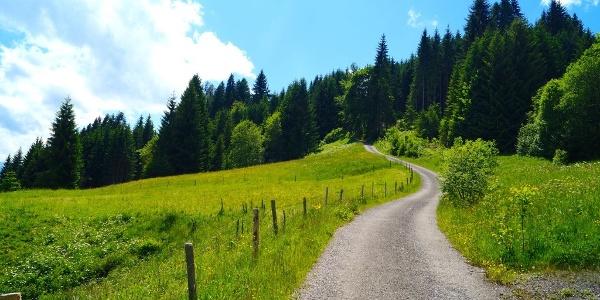 Weg bei Hüttenberg