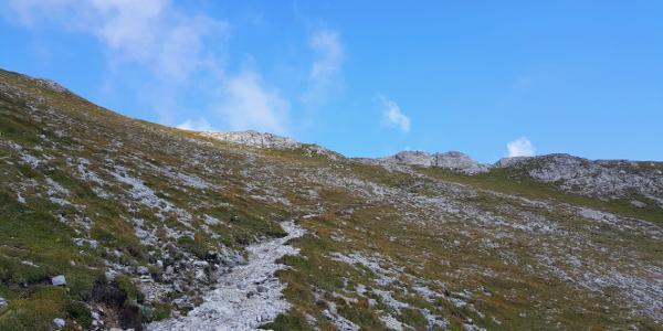 Aufstieg Gamssteig, dabei wurden wir oben von einem Steinbock empfangen. (Sieht man auf dem Bild)