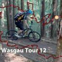 Mountainbikepark-Pfälzerwald Wasgau, Hauenstein West, Tour 12