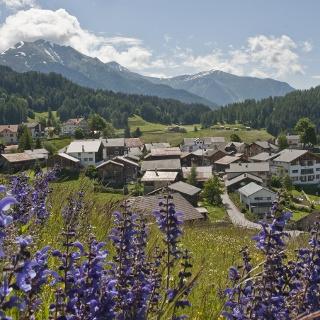 Malerisches Bergdorf Feldis
