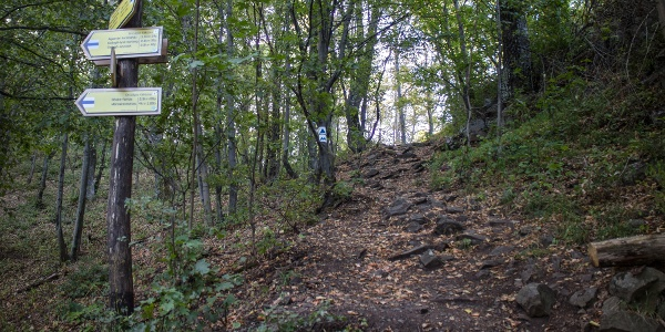 A Newton-sziklához vezető meredek ösvény a K és K▲ jelzés kereszteződésénél