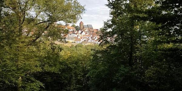 Blick auf Neuleiningen