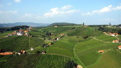 Inmitten des steirischen Weinlandes gedeihen prächtige Weine