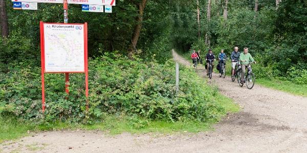 Knotenpunkt im Grenzwald zwischen Geldern-Walbeck und Arcen
