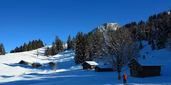 Schneeschuhgelände: Axalp oberhalb Brienz.