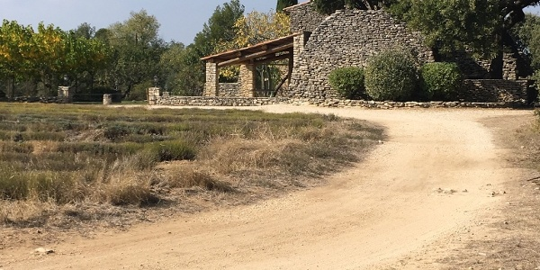 Stone house by the lavender field