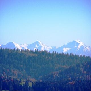 Blick auf die Alpen vom Pouillerel