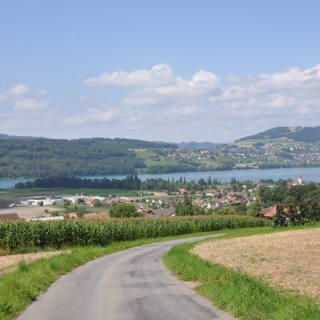 Blick Halwilersee