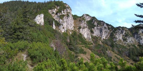Auf dem Thoraukopf sehen wir unseren Weg Richtung Thorauschneid.