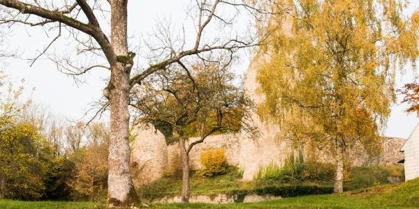"Burgruine Schloßthal ""Finger Gottes"" hinter Sahara-Staub"