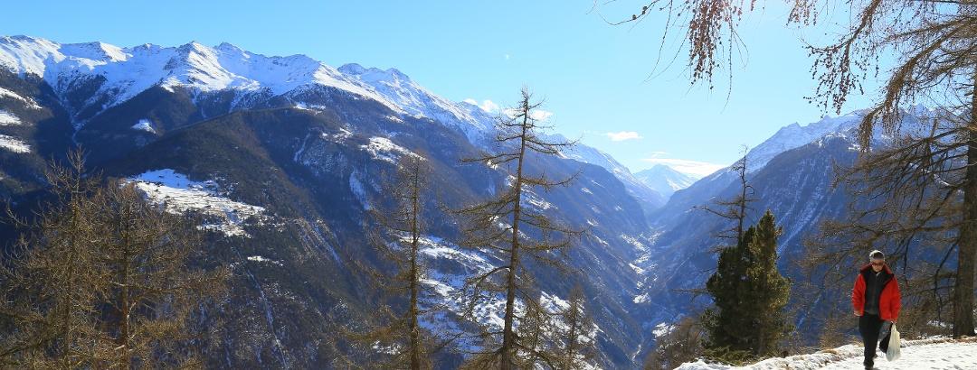 Winterwandern hoch über dem Mattertal.