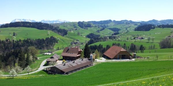 Blick von der Lotharhütte auf dem Vorberg