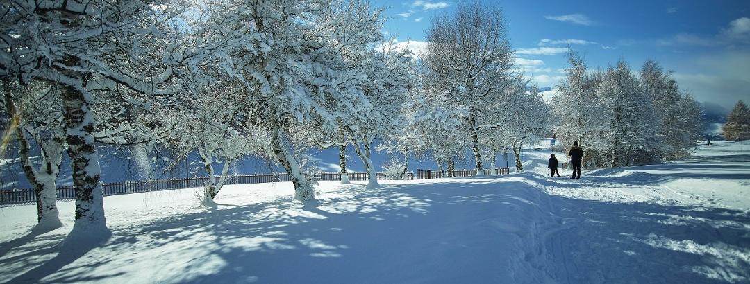 Winter hike around the Severiano Ballesteros Golf Course