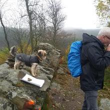 Auf dem Gipfel bei Bad Berleburg