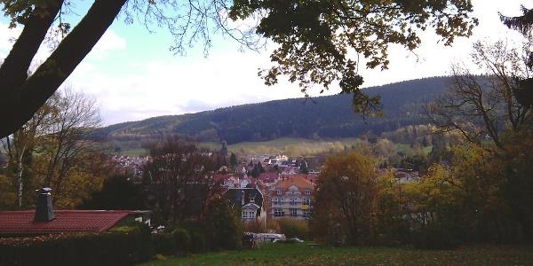 Aussicht auf Friedrichroda