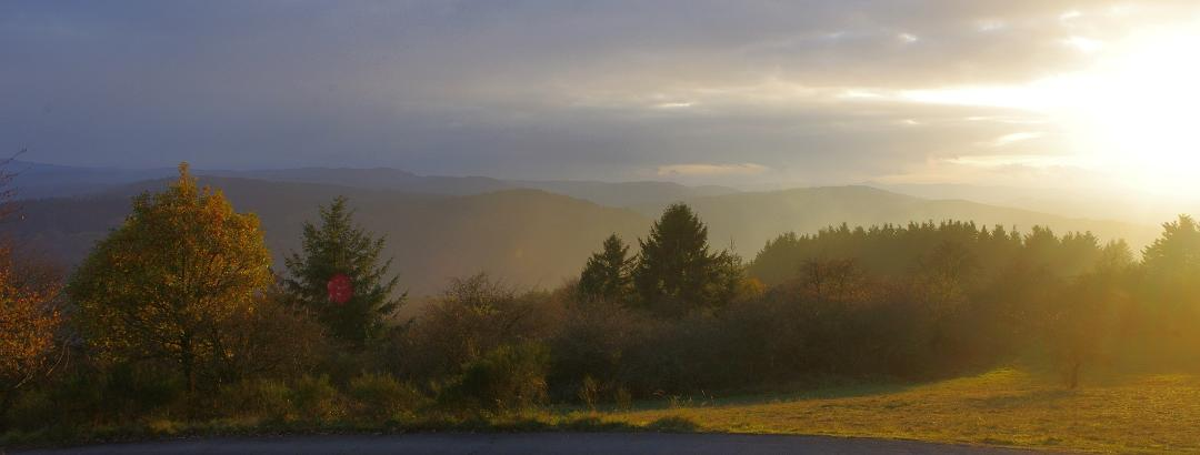 Aussicht vom Steinerberg