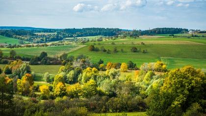 Blick bei Gültlingen vom Heckengäu in den Schwarzwald