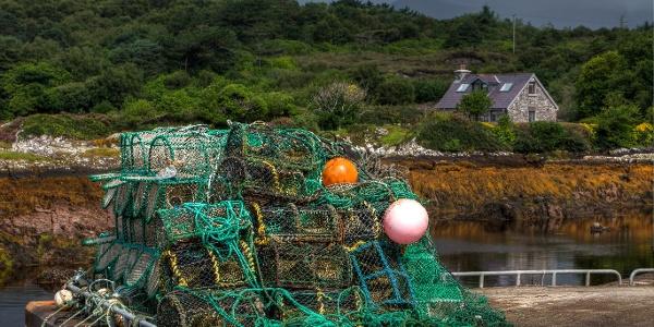 Fishing Pots in Sneem