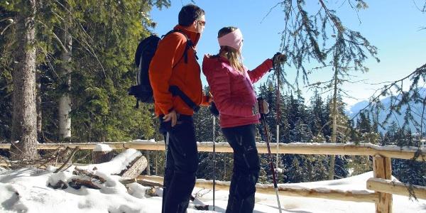 Schneeschuhtour in den Wäldern oberhalb von Crans-Montana