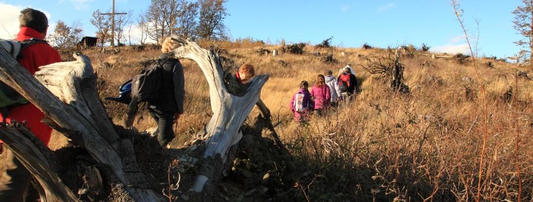 Wandergruppe auf dem Olsberg