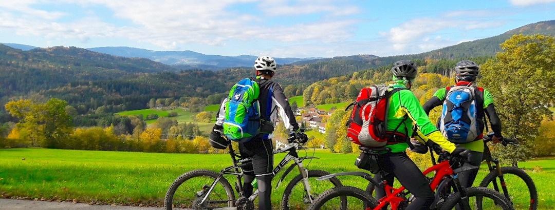 Blick über Asbach zum Pröller
