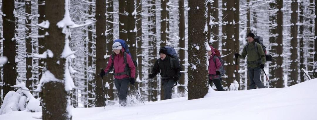 Winterwanderung in der Ferienwelt Winterberg