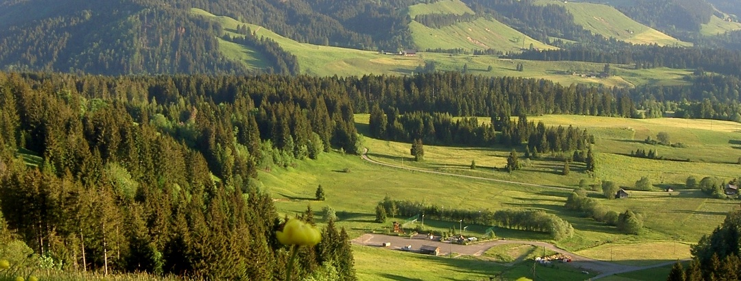 Aussicht Flachmoor Finsterwald und Bohrplattform