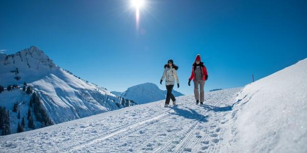 Winterwandern in Damüls-Faschina