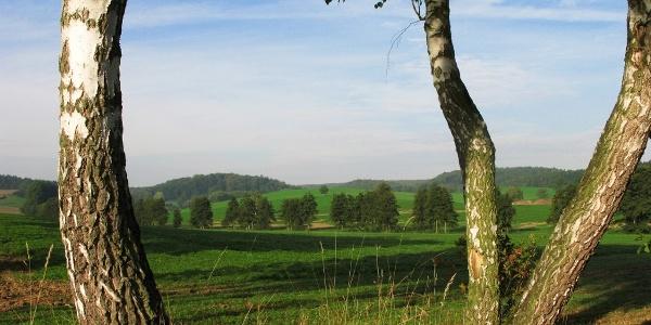 Sinsheimer Hügellandschaft