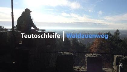 Waldauenweg   Premiumwanderwege Teutoschleifen   Tecklenburger Land   4K