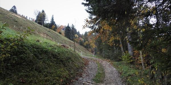 Aufstieg zur Hinteren Scheidegg über Badschwendialp