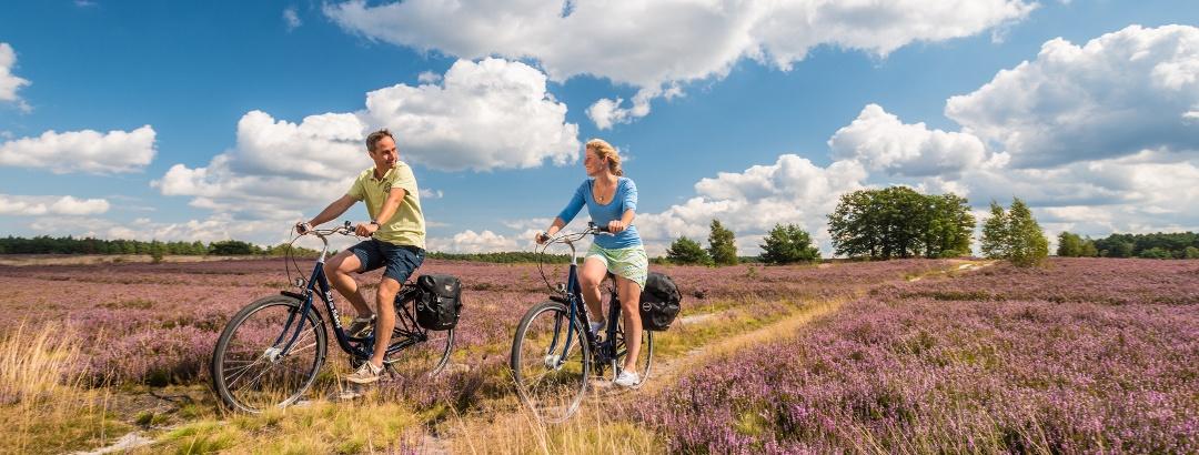 Cyclists Lüneburg Heath