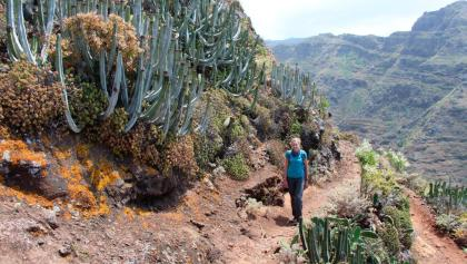 Hiking in the Anaga Mountains